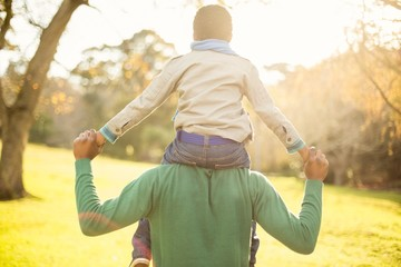 Rear view of a father with his son in piggyback