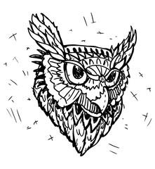 Vector Sketch of Owl Head