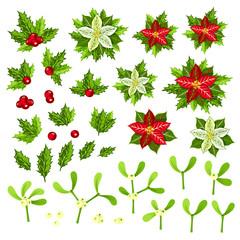 Christmas decoration set: poinsettia, holly and mistletoe.