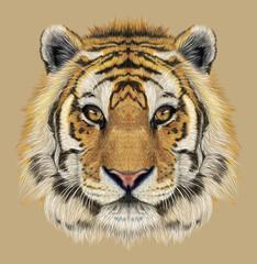 Illustrative Portrait of a Tiger. Beautiful face of big cat.