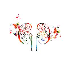 Colorful human kidneys design