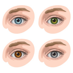 Eyes with different colors
