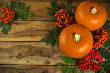 pumpkins, rowan berries and leaves on wooden background
