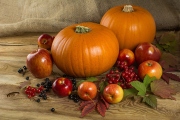 pumpkins, apple, cranberry, bird cherry, leaves on wooden background