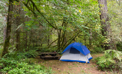 2 Person Tent Wooded Campsite Oxbow Regional Park