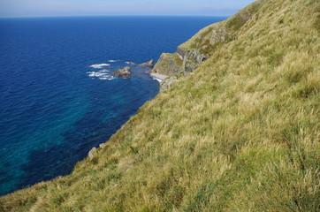 天売島の崖