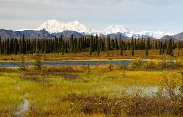 Denali Range Central Alaska Wilderness Area Mountain Lakes