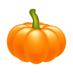 Halloween pumpkin realistic vector illustration isolated on white background. Image created with gradient mesh.