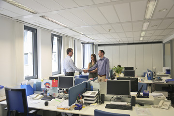 Colleagues in their office