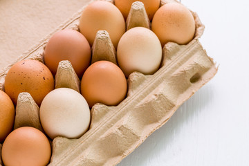 Fresh Eggs / Eggs / Fresh Eggs on White Background