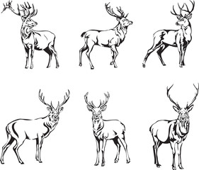 deer, deer figure, vector, illustration, black and white, silhouette