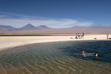 Cejas lagoon, Atacama desert, Chile