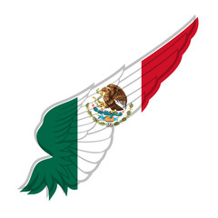 Wing with Mexico flag on white background. Vector illustration
