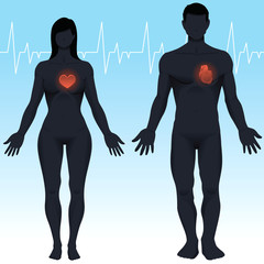 Male and Female Heart Health in Vector