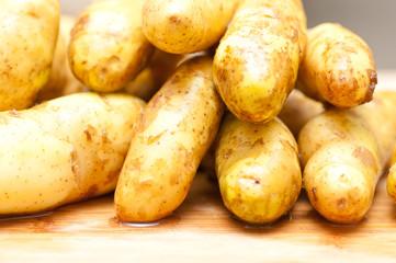 non gmo fingerling potatoes