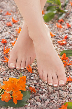 Natural Pedicure and Orange Star Flowers in Nature