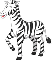 Zebra cartoon illustration