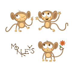 Cartoon monkeys set. Vector image.