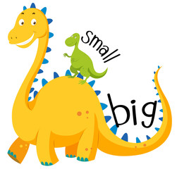 Opposite adjective big and small