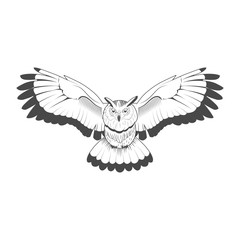 Wild owl emblem black and white vector