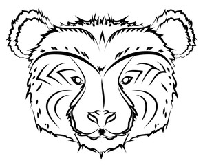 bear line drawing