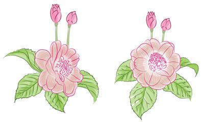 Flower water color set