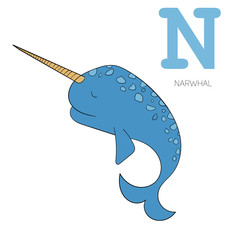 Alphabet letter N narwhal  children vector