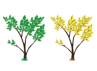 tree green and yellow set