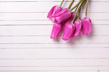 Fresh pink  tulips  on white  painted wooden background.
