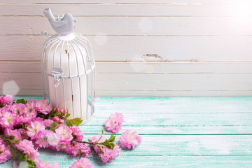 Background with pink  flowers  and candle