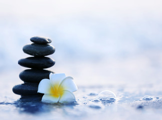 Photo sur Plexiglas Zen pierres a sable Spa stones with flower on sea beach outdoors