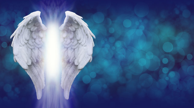 Angel Wings on Blue Bokeh Banner    - Wide blue bokeh background with a large pair of Angel Wings on the left side and a shaft of bright light between