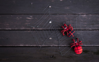 Red spiders on wire web with dark wood background