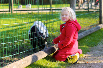 Adorable toddler girl petting little goat in the kids farm. Cute kind child feeding animals in the zoo. Family with preschooler enjoying day in the park.