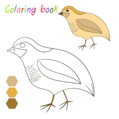 Coloring book quail kids layout for game