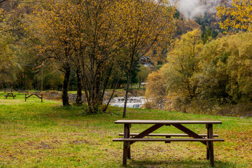 The bench in park in autumn