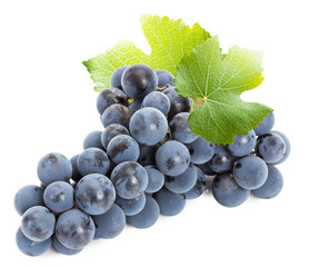 purple grape isolated on the white background