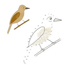 Connect the dots game bird vector illustration
