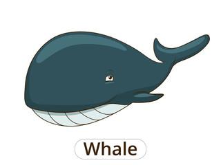 Whale sea animal fish cartoon illustration