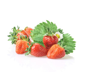 Fresh strawberries in bucket