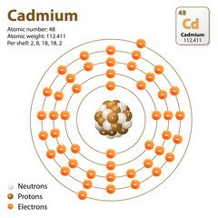 Atom Cadmium. vector diagram