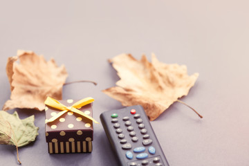 TV remote control and autumn leafs