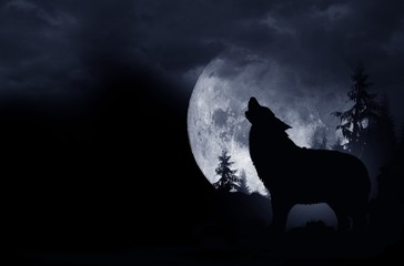 Door stickers Wolf Howling Wolf Background