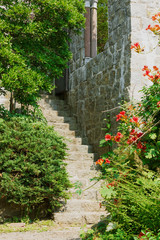 Ancient stairs with flowering shrubs