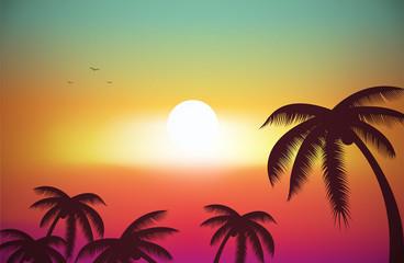 A Tropical Island Sunset