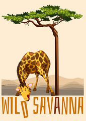 Wild Savanna theme with giraffe and tree