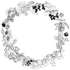 Wreath with various garden berries, hand-drawn with black pen. Black and white vector design.