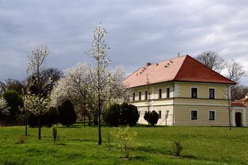 Village manor