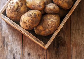 Potatoes close up on wooden background