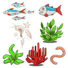 Water animals fish food vector illustration